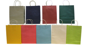Cheap Advertising Kraft Paper Bag